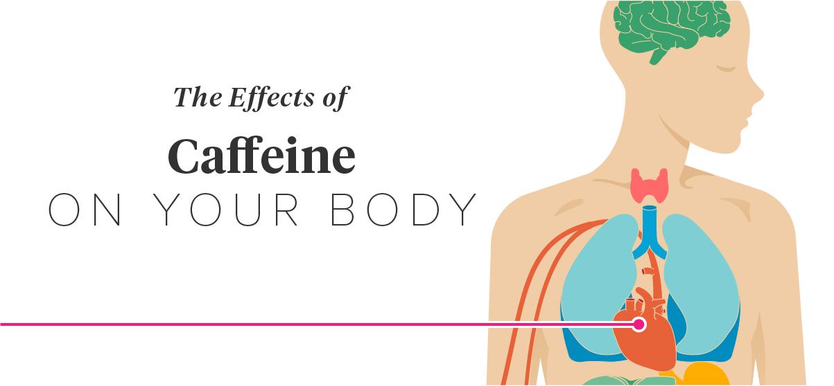the negative effects of caffeine Caffeine is a stimulant for the central nervous system of our body it enhances mood, increases mental performance and stimulates alertness.