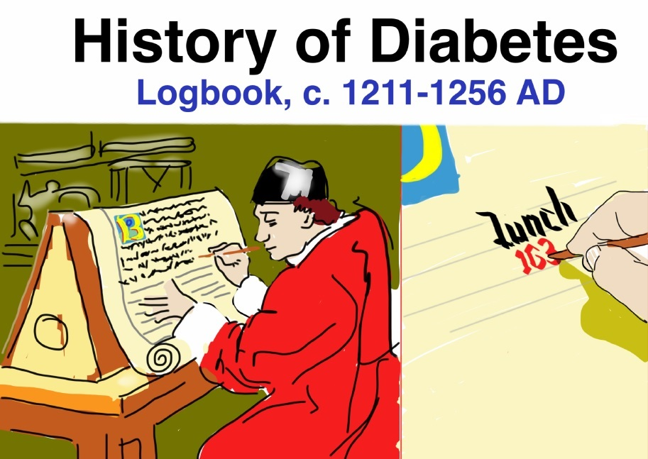 History of Diabetes Logbook