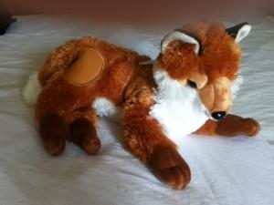 Animas fox