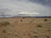 Desert Dookie