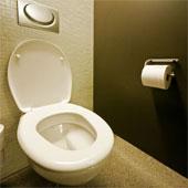 Public toilet stall.