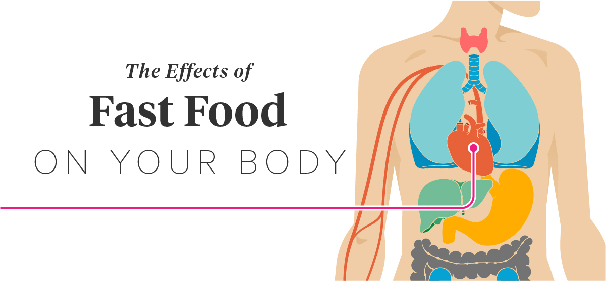 the causes and effects of fast food to our bodies Eating too much fast food is one of the most dangerous negative effects of fast  food on your body.