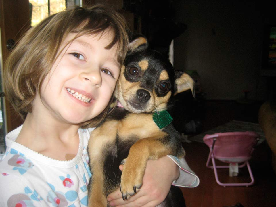 young girl, smiling, with puppy