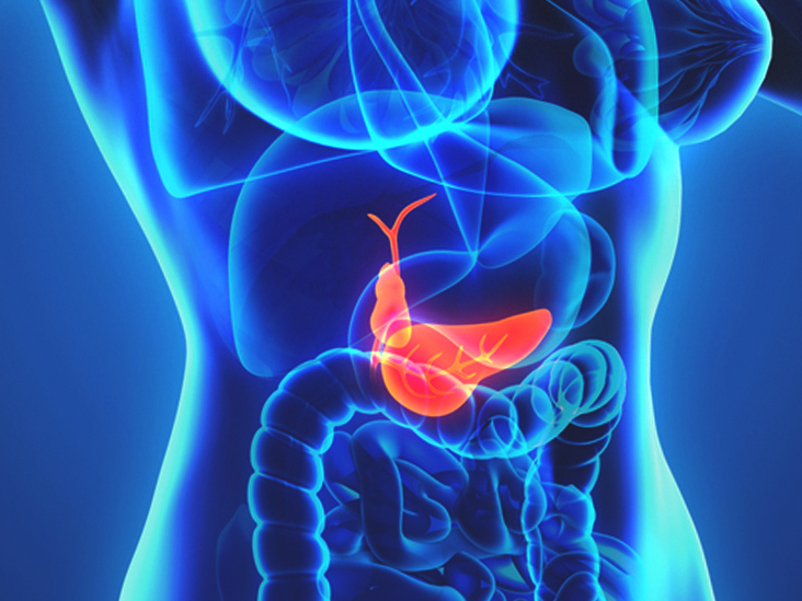 Gallbladder Removal Purpose Risks And Procedure