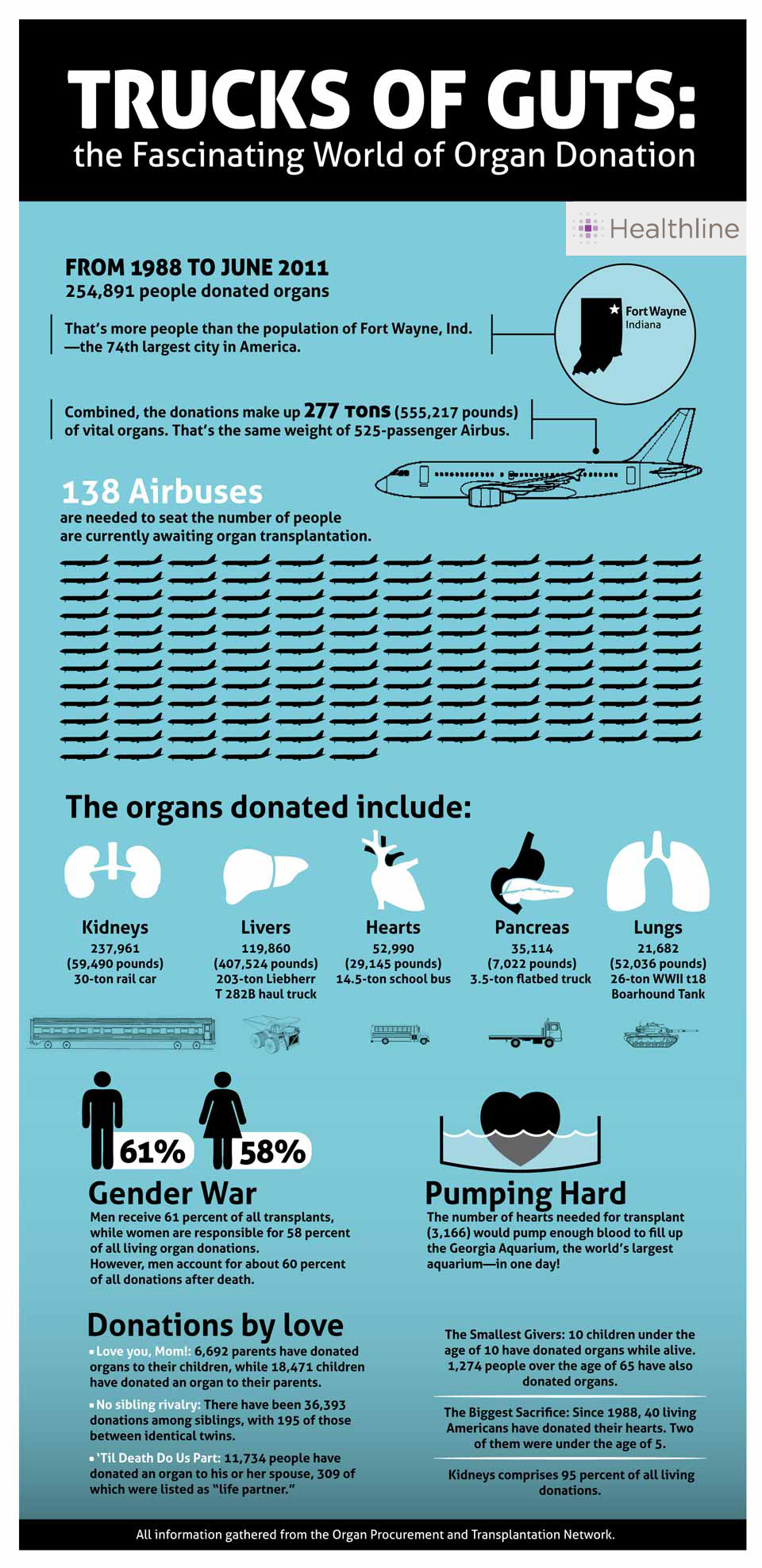 Infographic about organ donation