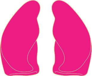lung_irritation