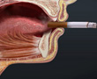 illustration of mouth with cigarette