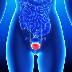 an introduction to the issue of bladder cancer Tests to diagnose bladder cancer, such as cystoscopy, are done when symptoms or routine tests suggest a problem learn about diagnosis of bladder cancer.