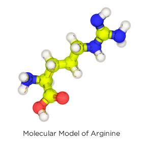 L arginine and viagra
