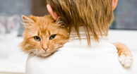 Pet Therapy: People and Their Pets Coping with MS