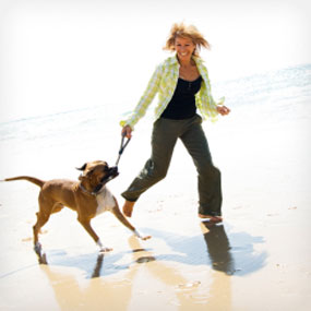 A woman walks her dog on the beach.