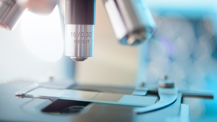 human gene editing
