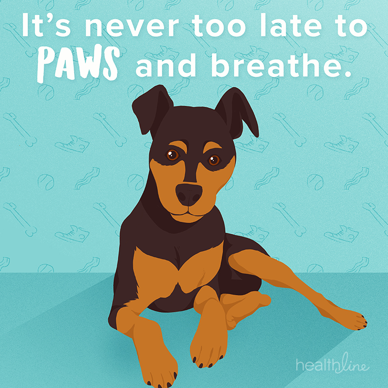 motivational dog quotes