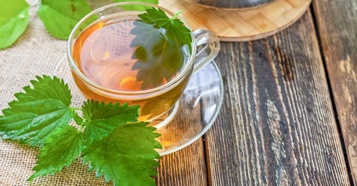 Nettle Tea: 4 Health Benefits, How to