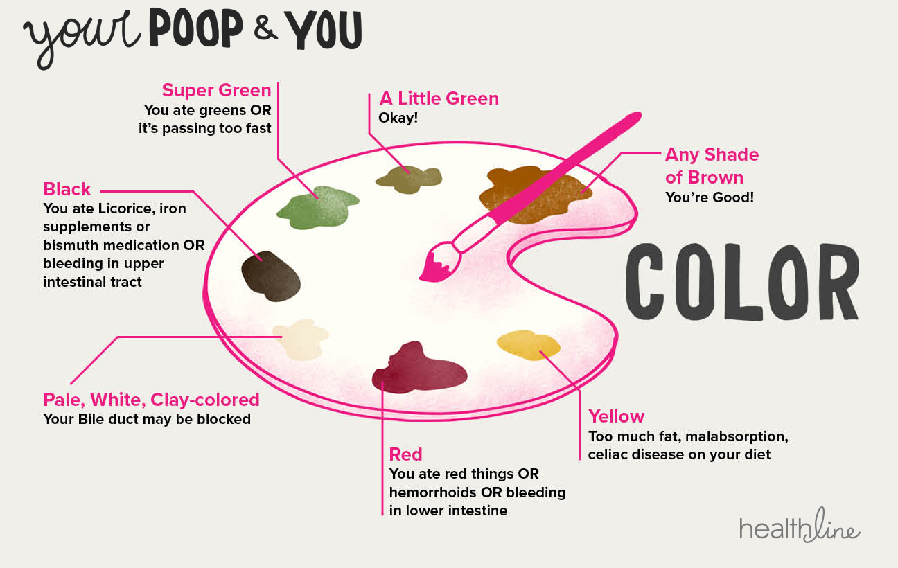 types of poop: appearance, color, consistency, time