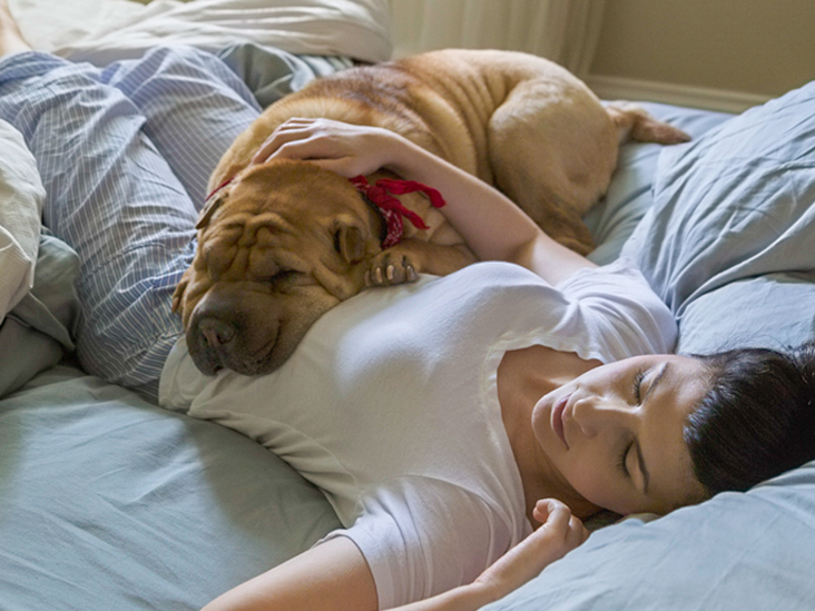How Daily Naps Actually Make Me More Productive