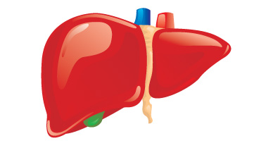What You Should Know About Hepatic Failure
