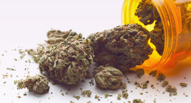 Is Marijuana Effective for Treating the Side Effects of Hepatitis C Medication?