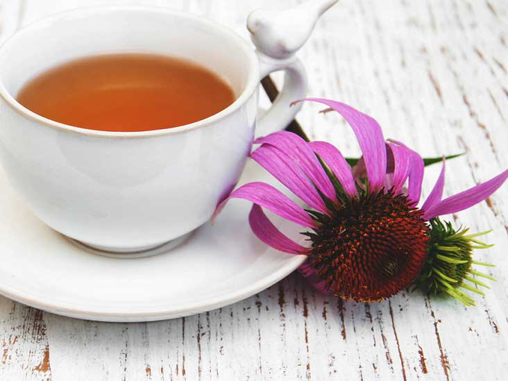 7 Echinacea Tea Benefits