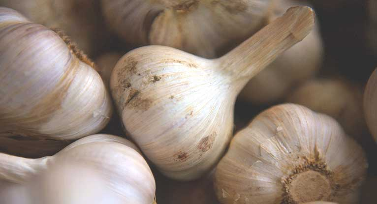 Do I Have a Garlic Allergy?
