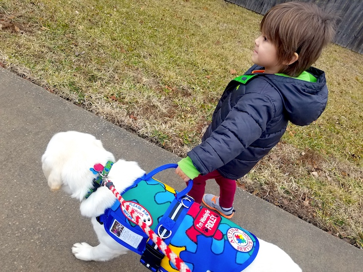 Hondo and Ridley: The Incredible Story of a Boy and His Autism Dog
