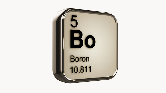 Brains, Bones & Boron