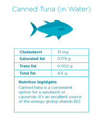 cholesterol in fish what you should know