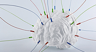 brain model with wires in it