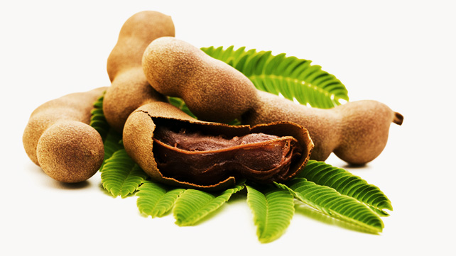 A Primer on Tamarind