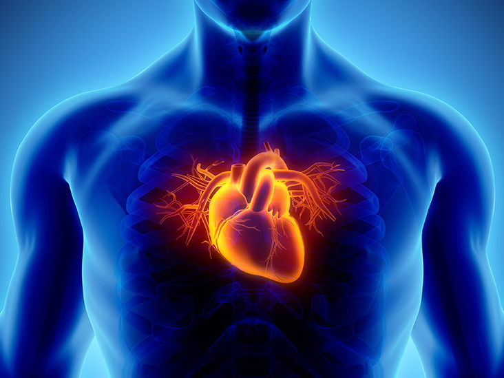 coronary heart disease Coronary heart disease (chd), also called coronary artery disease (cad) and atherosclerotic heart disease, is the end result of the accumulation of atheromatous plaques within the walls of the.