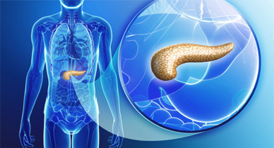 pancreas insufficiency