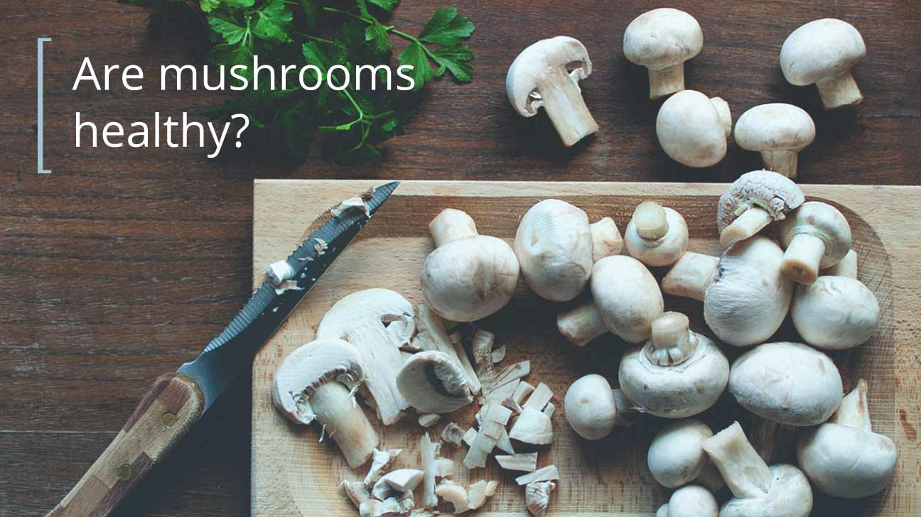 Is it possible to feed mushrooms