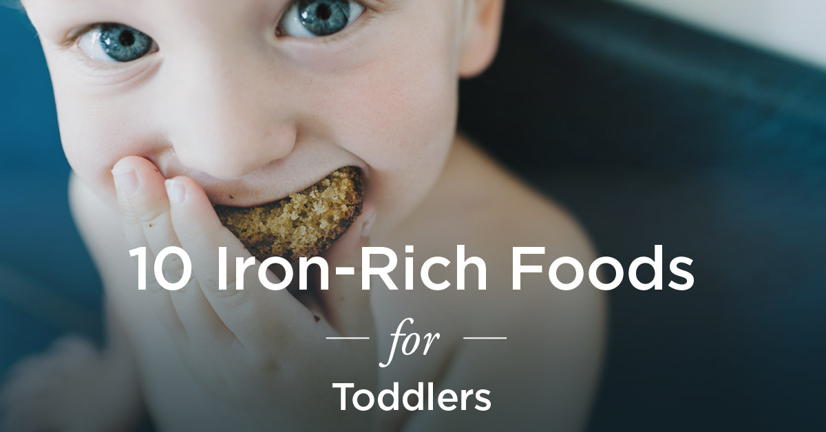 Iron Rich Foods For Toddlers 10 To Try
