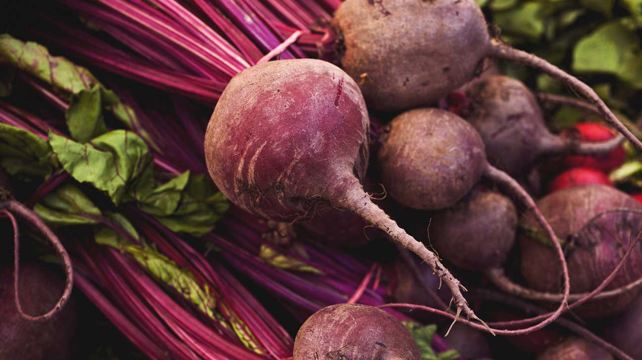 What is root beet