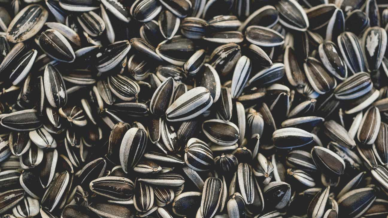calories in sunflower seeds