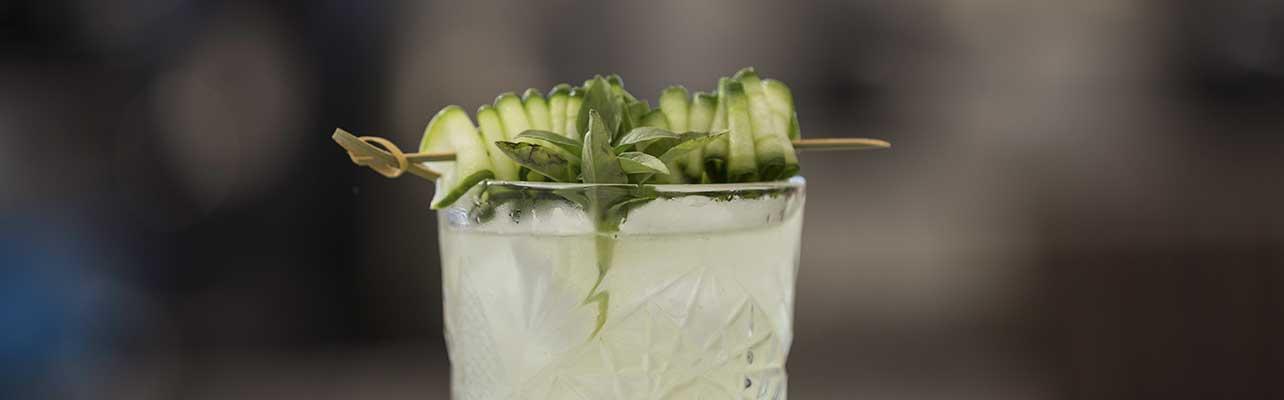 Cucumber citrus gimlet