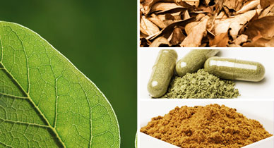 Kratom: Is It Safe?