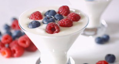 Yogurt with Lactobacillus Acidophilus