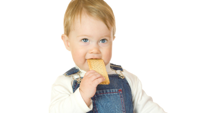 Arrowroot Cookies for Teething Babies