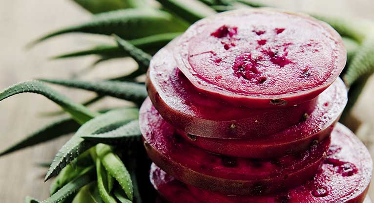 9 Prickly Pear Recipes