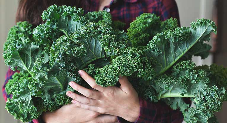 Is Kale a Good Source of Protein?