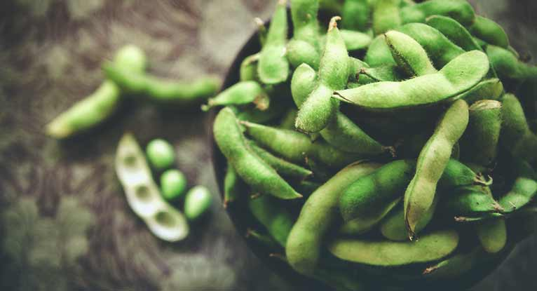 Is Soy Good for You?