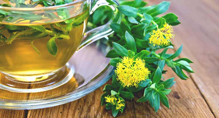 Rhodiola: Health Benefits and Risks