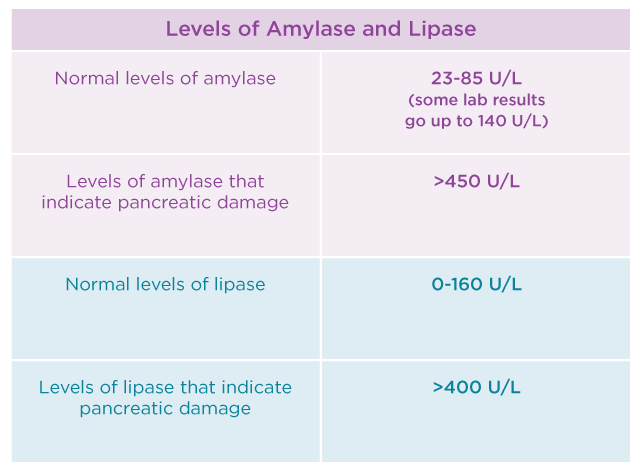 Amylase and Lipase Tests