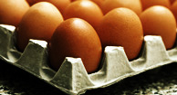 How Many Grams of Protein Per Day Is Healthy?