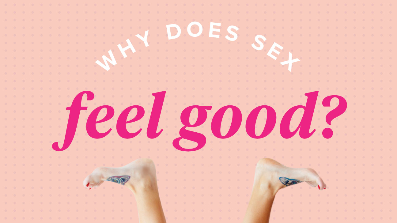 why does sex feel good for men and women?
