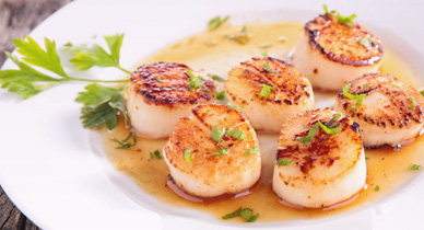 Scallops for cholesterol control 5 heart healthy recipes forumfinder Choice Image