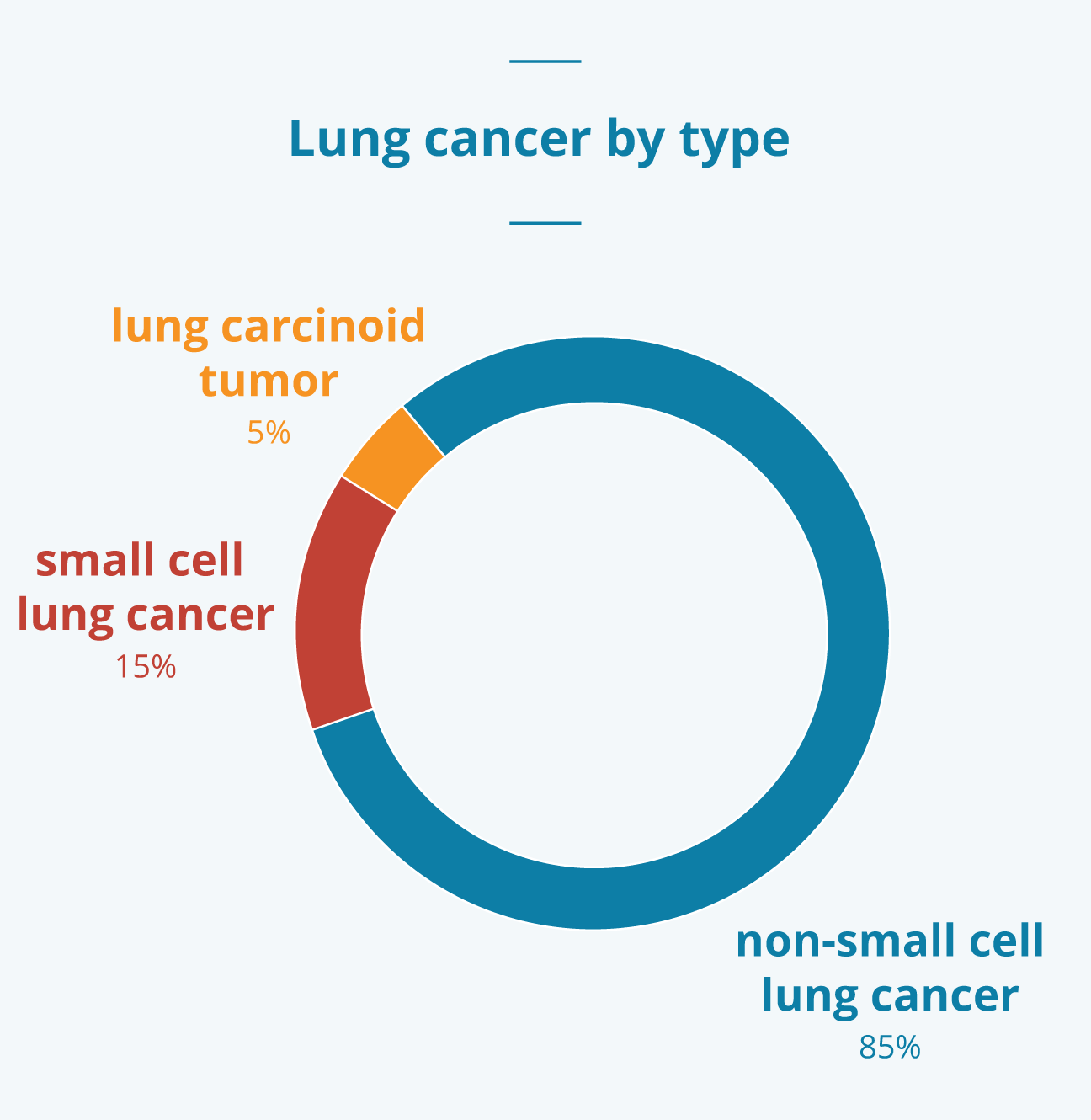 Lung cancer stages survival rates and more lung cancer stats biocorpaavc