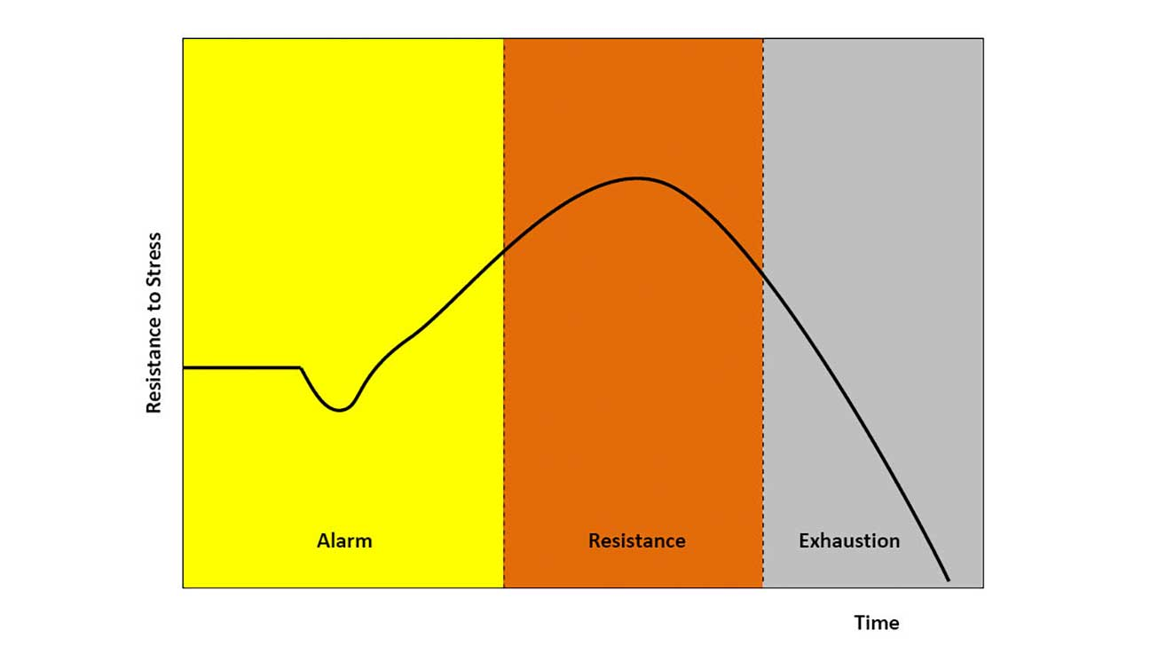 general adaptation syndrome General adaptation syndrome describes the three stages your body goes through  when undergoing stress learn the signs of each stage.