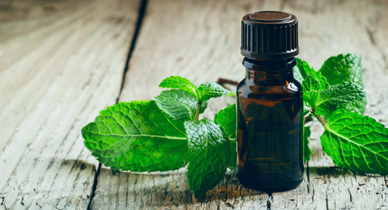 Can Peppermint Oil Be Used for Migraine Relief?